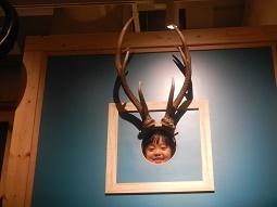 国立科学博物館 in 上野_f0153418_09403925.jpg