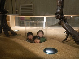 国立科学博物館 in 上野_f0153418_09414923.jpg