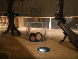 国立科学博物館 in 上野_f0153418_09434155.jpg