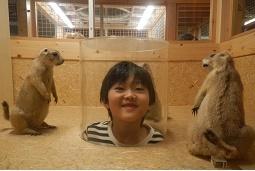 国立科学博物館 in 上野_f0153418_09441233.jpg