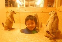 国立科学博物館 in 上野_f0153418_09442979.jpg