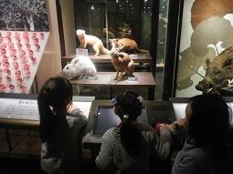 国立科学博物館 in 上野_f0153418_09450835.jpg