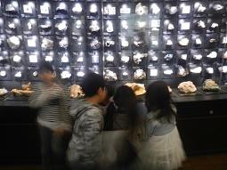 国立科学博物館 in 上野_f0153418_09453987.jpg