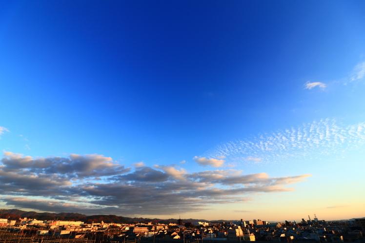 五重塔と新幹線 京都鉄道博物館のスカイテラス_f0209122_17225612.jpg