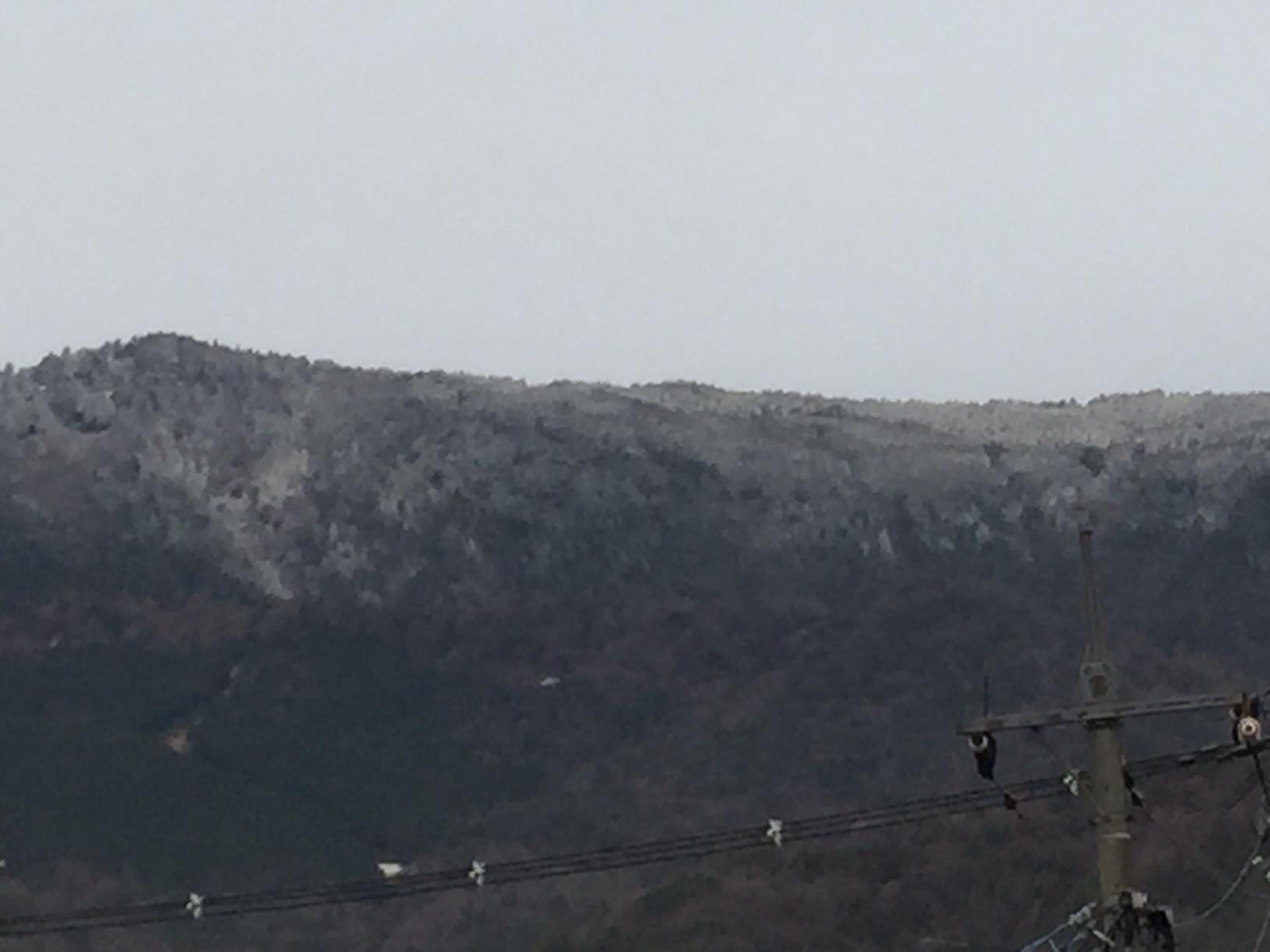 野呂山、うっすら雪化粧_e0175370_12241272.jpg