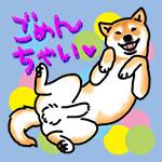 にゅうコンデジ来たゾ〜!_b0057675_10570192.jpg