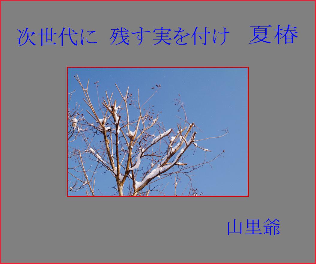 d0034980_21081986.jpg