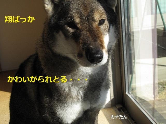 f0143123_20581085.jpg