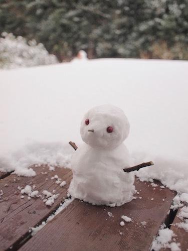 またも積雪 & 怪訝な顔のガーナさん_a0335560_18110809.jpg