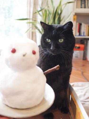 またも積雪 & 怪訝な顔のガーナさん_a0335560_18120963.jpg