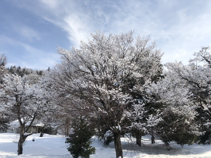 雪の宮口古墳_d0182179_19242551.jpg