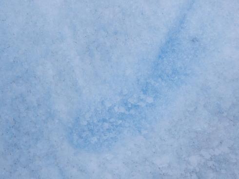 """10日目:ペリトモレノ氷河トレッキング \""""BIG ICE\""""_a0207588_19281109.jpg"""