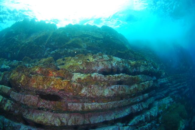 サンゴ調査も終わったし、そろそろ魚をじっくりと・・_a0138196_00135186.jpg