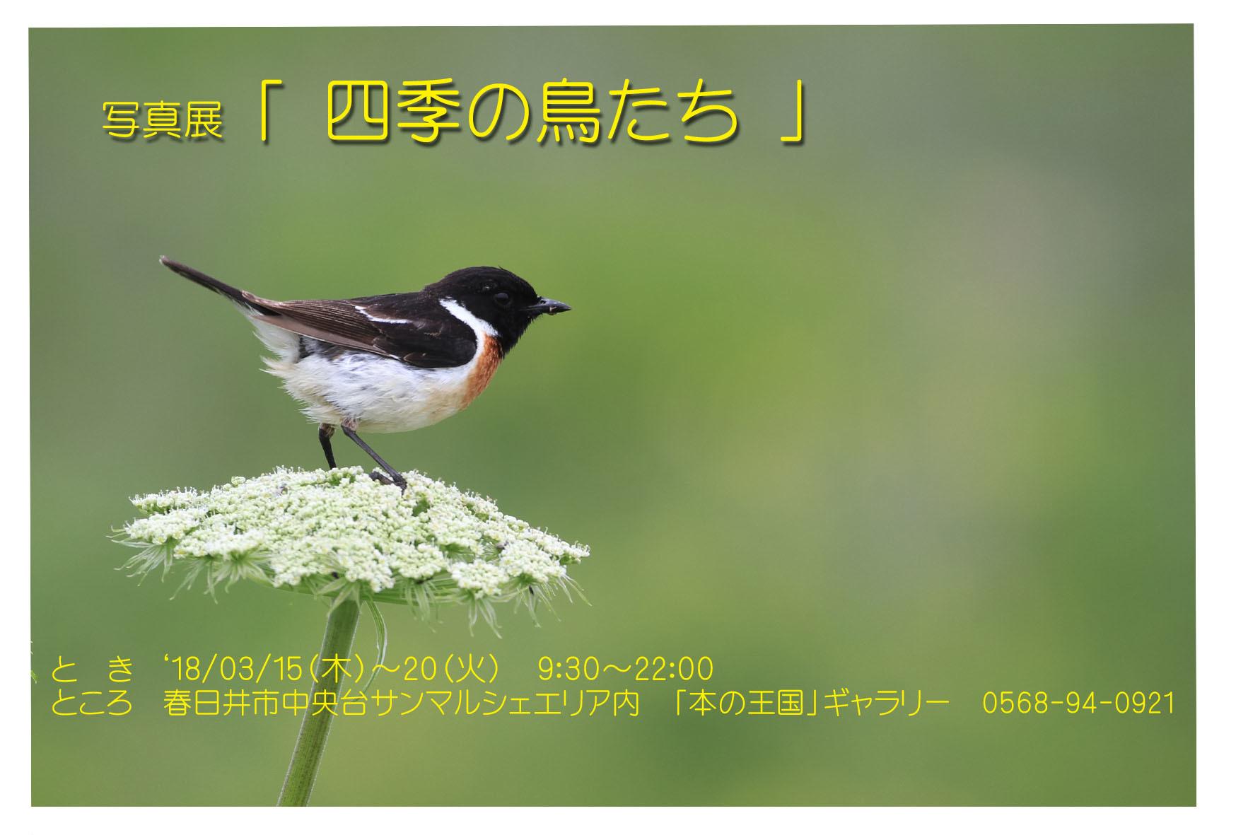 f0349409_13011959.jpg