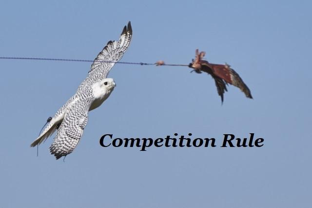 フライトフェスタ2019 競技ルール Flight Festa 2019 Competition Rule_c0132048_16533008.jpg