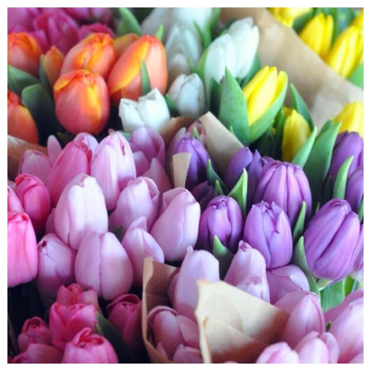 春の準備へ❃_f0168650_13384697.jpeg