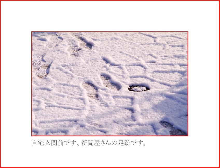 d0034980_20105285.jpg