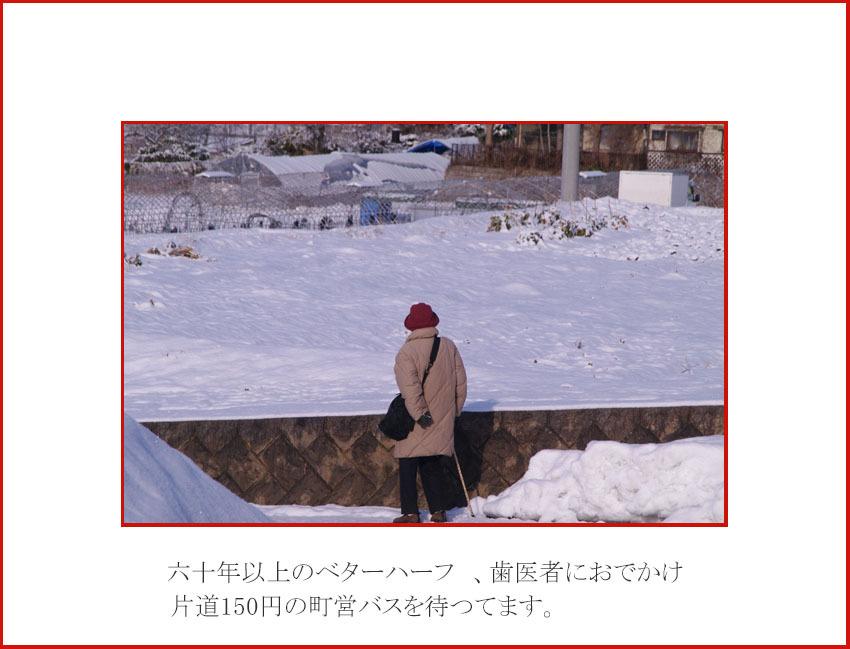 d0034980_20113947.jpg