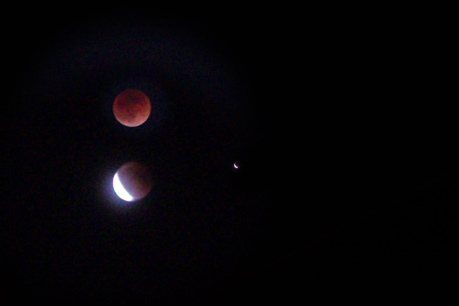新年会、Super Blue Blood Moon_a0271402_08375018.jpg