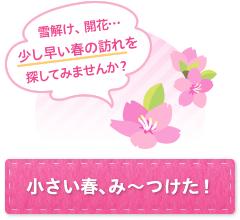 【キャンペーン】小さい春、み~つけた!