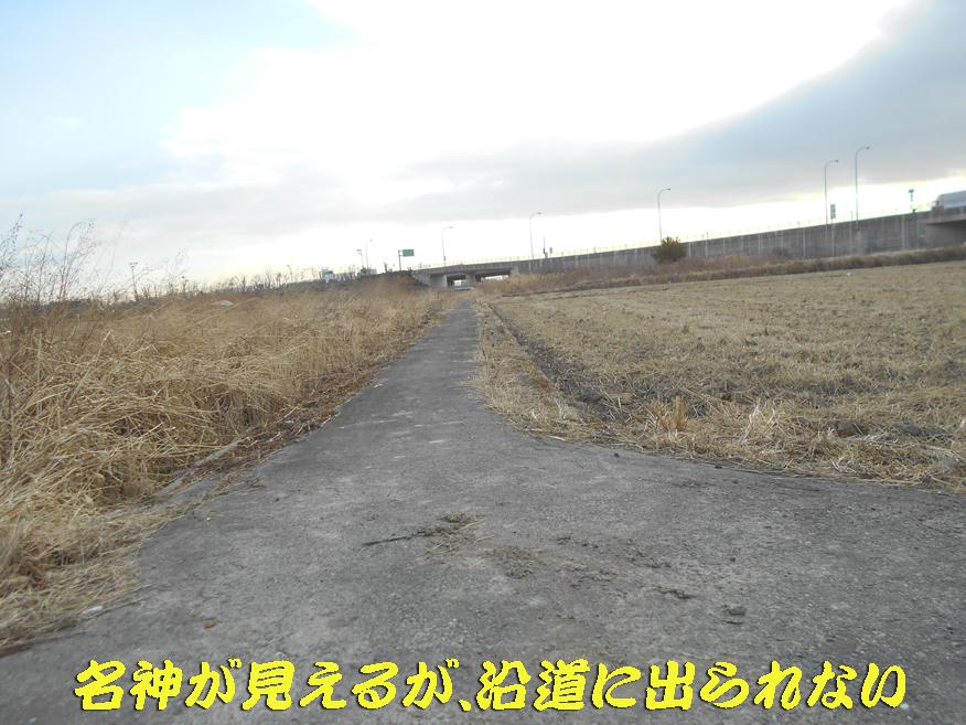 d0095910_10405981.jpg