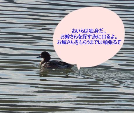b0352112_1428351.jpg