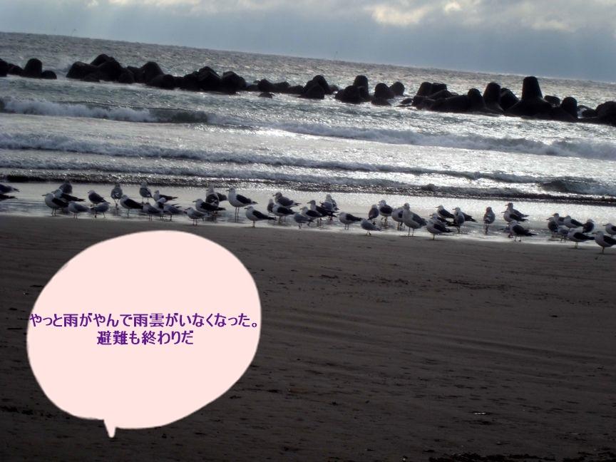 b0352112_1523922.jpg