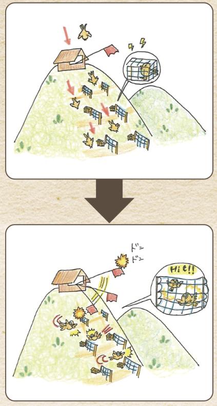 鳥屋(かすみ網)猟とは何か。イラストでわかりやすくしてみました。_a0026530_11422648.png
