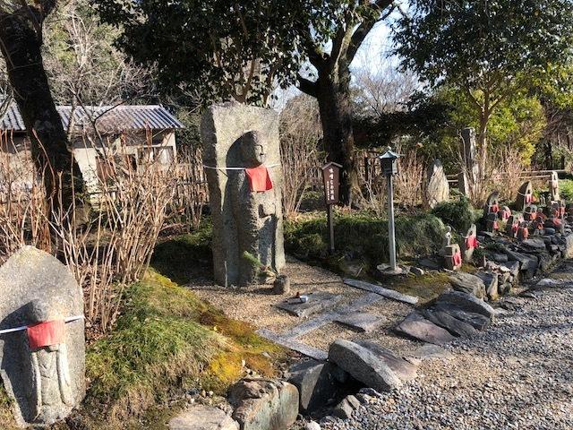 今年の開園に向けてアジサイ園の整備をしております_b0140774_09382073.jpeg