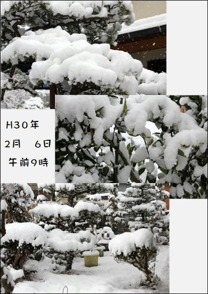 f0003174_13522240.jpg