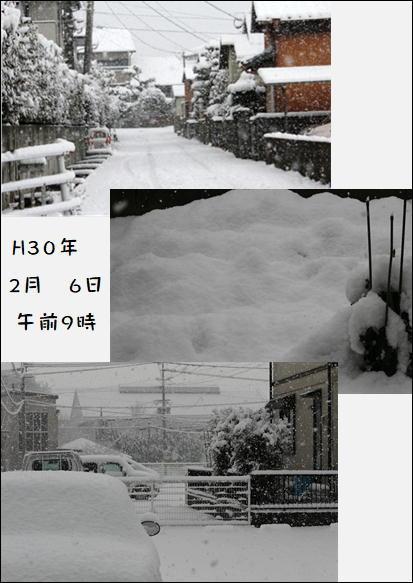 f0003174_13523869.jpg