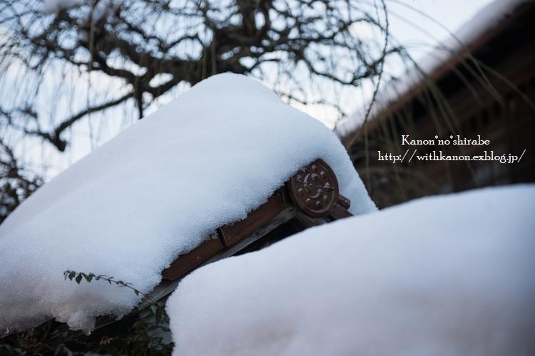 雪国へ_d0148187_21343575.jpg