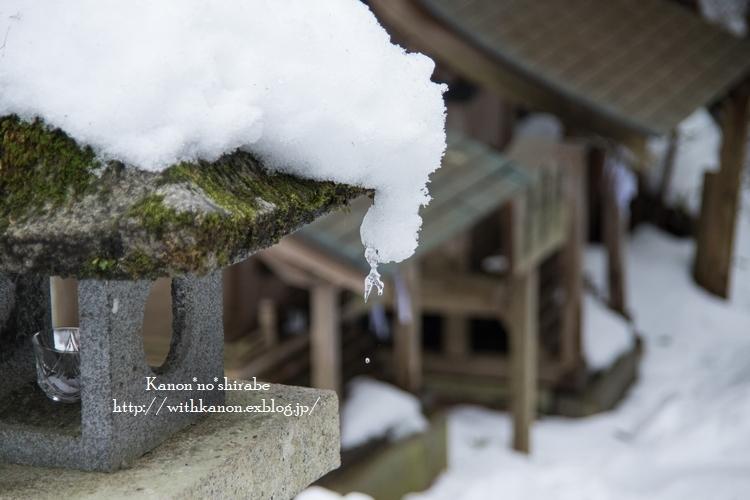 雪国へ_d0148187_21364441.jpg