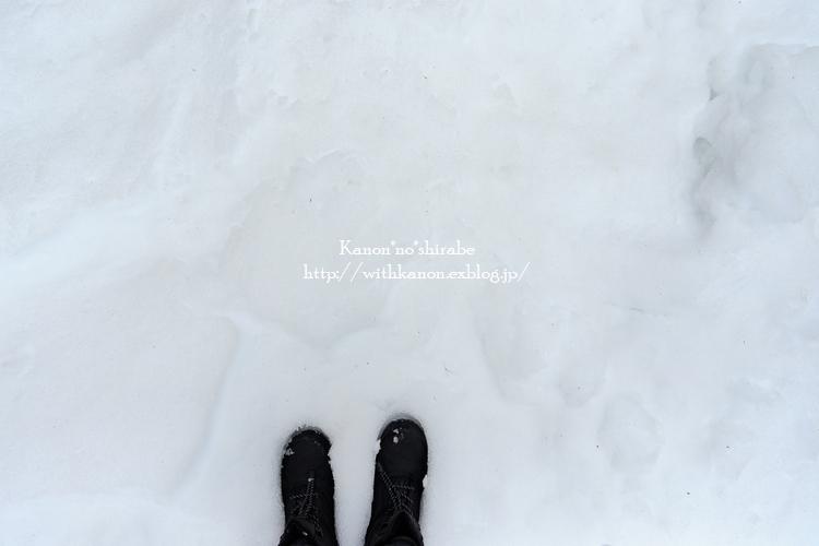 雪国へ_d0148187_21521163.jpg