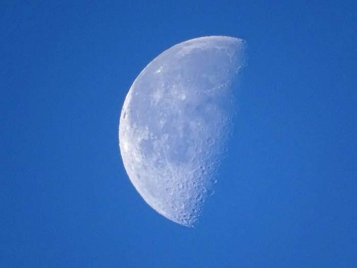 下弦の半月_e0016894_22154322.jpg