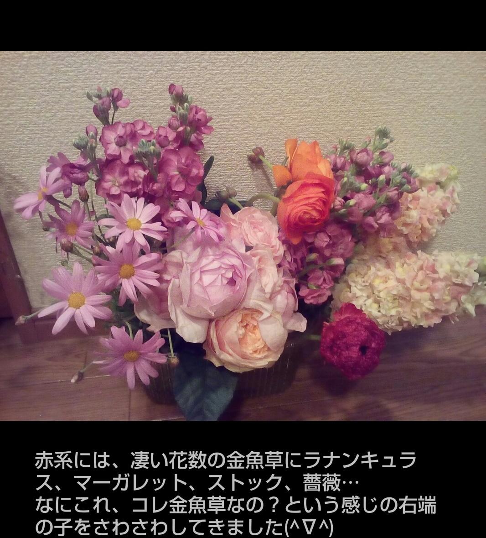 a0042928_11504646.jpg