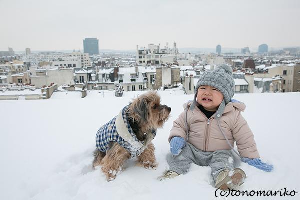 パリの大雪。バブー家の特別な雪さんぽ?!_c0024345_21310111.jpg