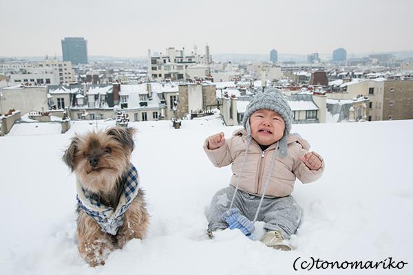 パリの大雪。バブー家の特別な雪さんぽ?!_c0024345_21310129.jpg