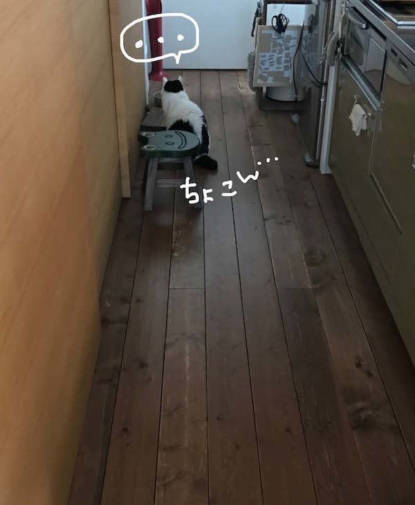 b0223446_16480370.jpg