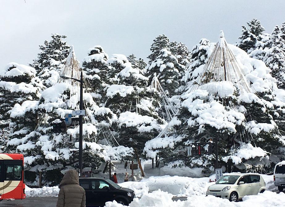 雪 ☃☃☃_c0225067_10555824.jpg