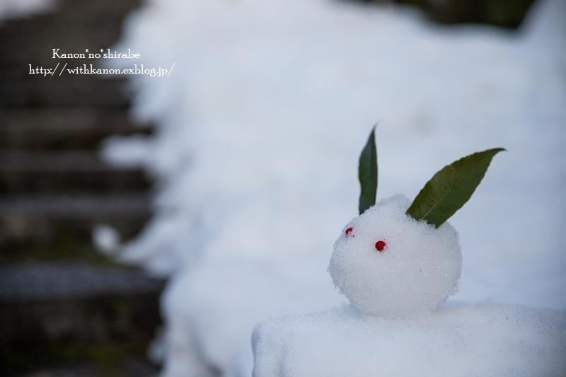 雪うさぎ_d0148187_22523939.jpg