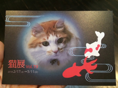 猫のお昼寝_d0214221_08010132.jpg