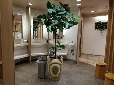 トイレの旅_e0190287_14370242.jpg