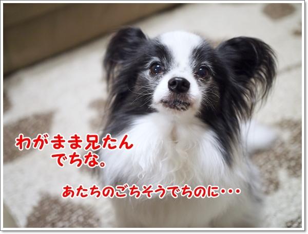 d0013149_00202661.jpg