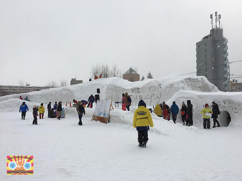 『 雪っていいね・ていね 』初日 2月11日_e0126901_20204324.jpg