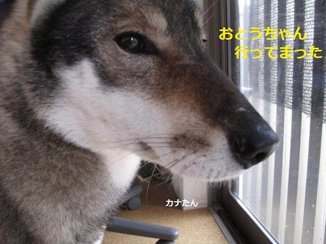 f0143123_17003665.jpg