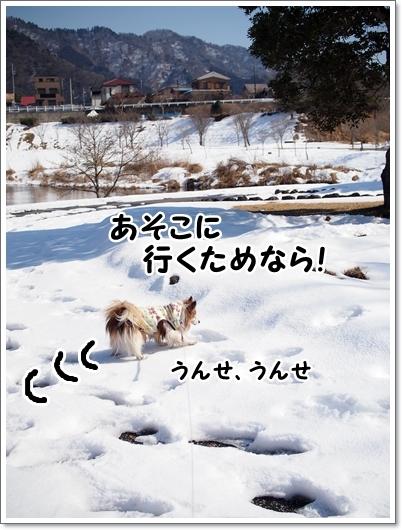 d0013149_00110204.jpg
