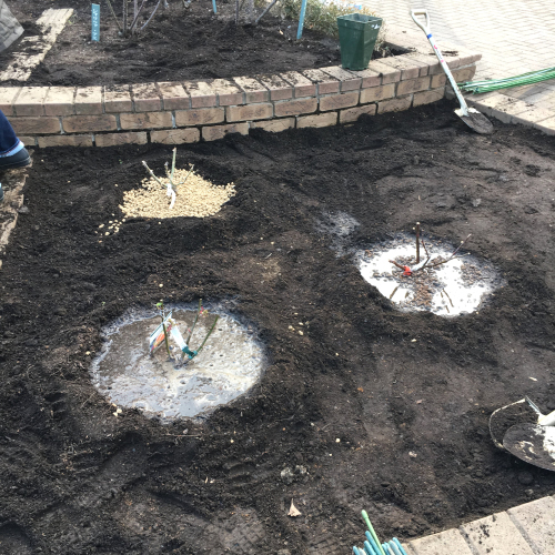 2018年2月の月例会「植え付け」駒場野公園拡張スペース_a0094959_21051543.jpg