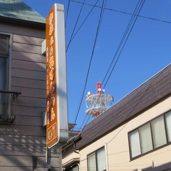 猫窓と金魚、そのまま 大和郡山市にて_c0001670_16523502.jpg