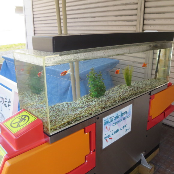猫窓と金魚、そのまま 大和郡山市にて_c0001670_16523615.jpg